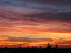 sunset-20090302